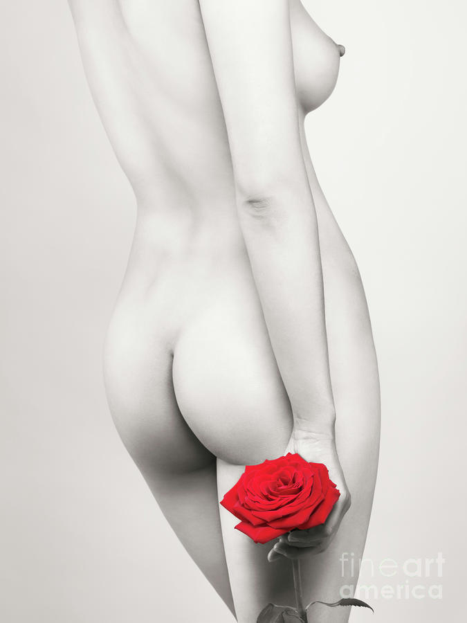 Beautiful Naked Woman With A Rose Photograph