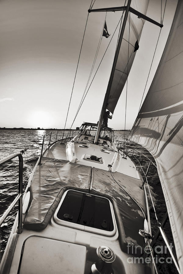 Beneteau 49 Sailing Yacht Close Hauled Charleston Sunset Sailboat Photograph  - Beneteau 49 Sailing Yacht Close Hauled Charleston Sunset Sailboat Fine Art Print