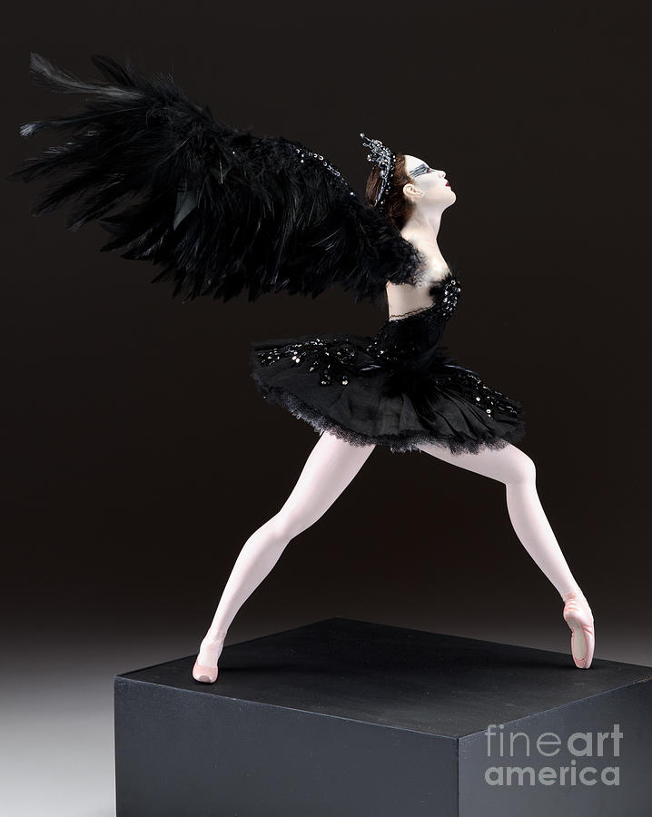 Black Swan  Sculpture