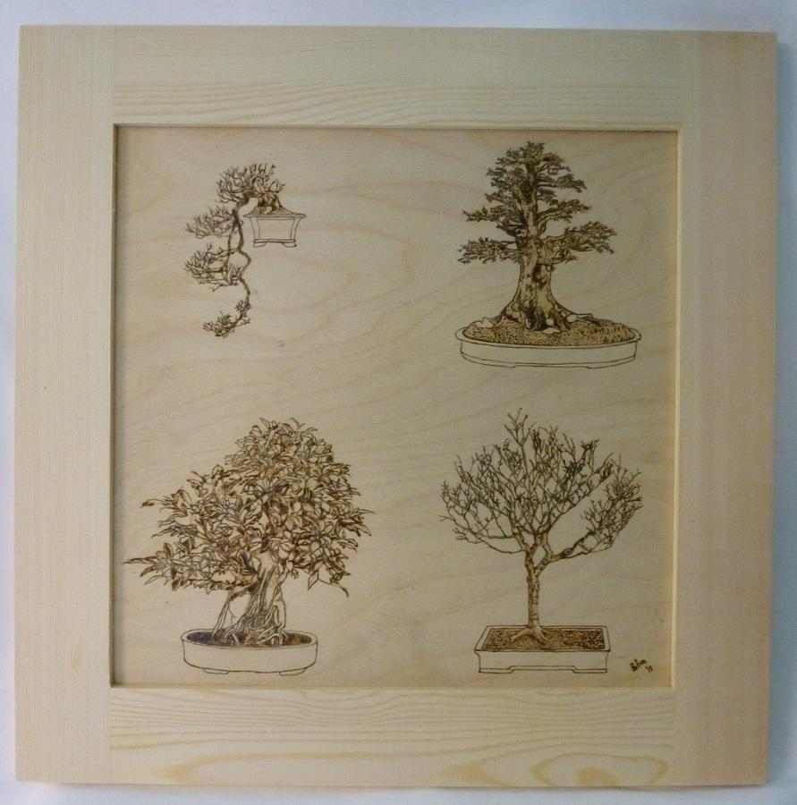 Bonsai Pyrographic Art Original Panel With Frame By Pigatopia Pyrography  - Bonsai Pyrographic Art Original Panel With Frame By Pigatopia Fine Art Print
