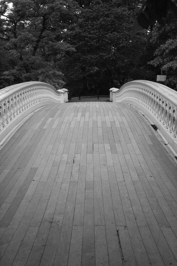 Bow Bridge Central Park Photograph  - Bow Bridge Central Park Fine Art Print