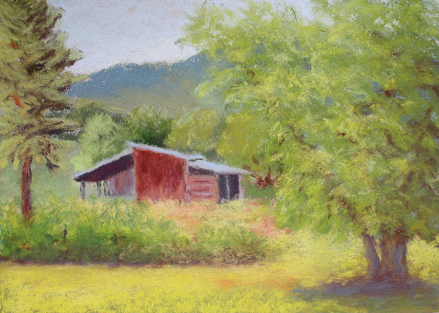 Browns Shed Painting  - Browns Shed Fine Art Print