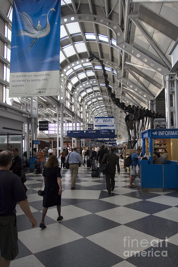 Busy Airport Terminal Concourse At Chicagos Ohare Airport Photograph  - Busy Airport Terminal Concourse At Chicagos Ohare Airport Fine Art Print
