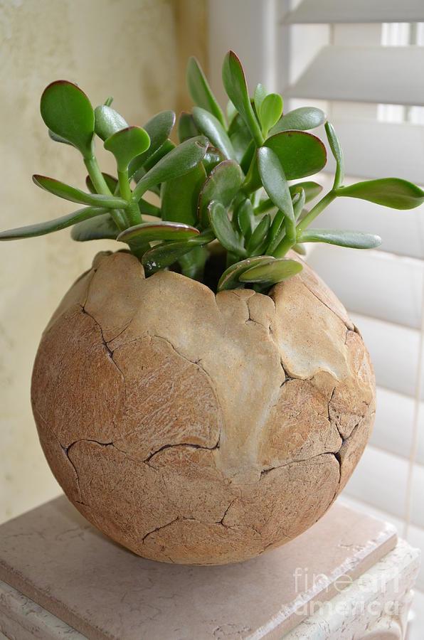 Ceramic Vessel Ceramic Art