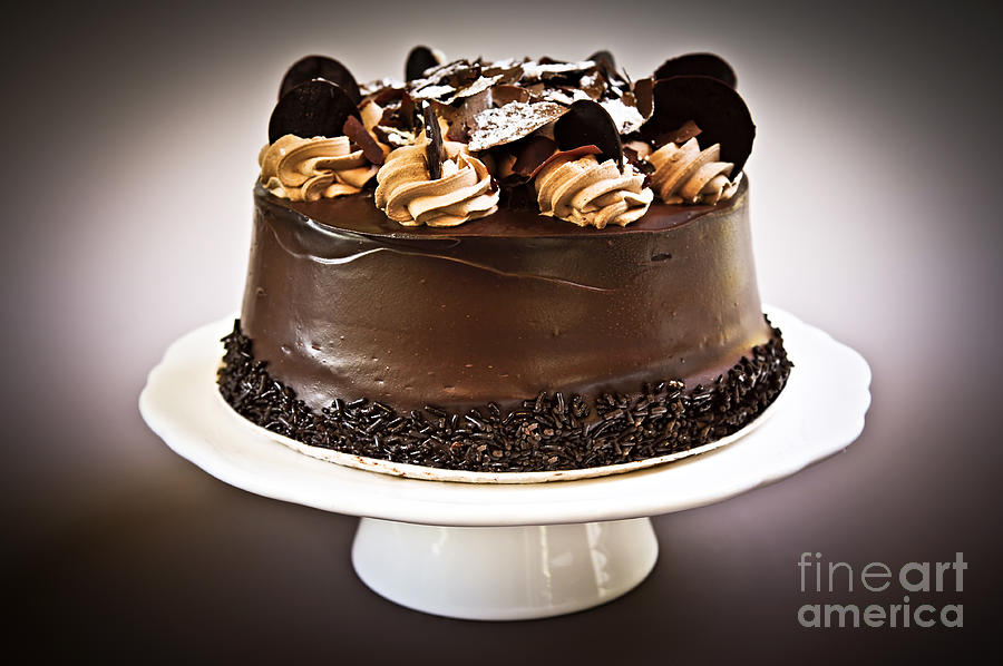 Chocolate Cake Photograph  - Chocolate Cake Fine Art Print
