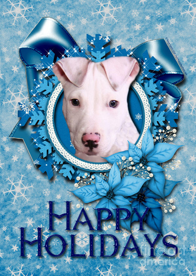 Christmas - Blue Snowflakes Pitbull Digital Art  - Christmas - Blue Snowflakes Pitbull Fine Art Print