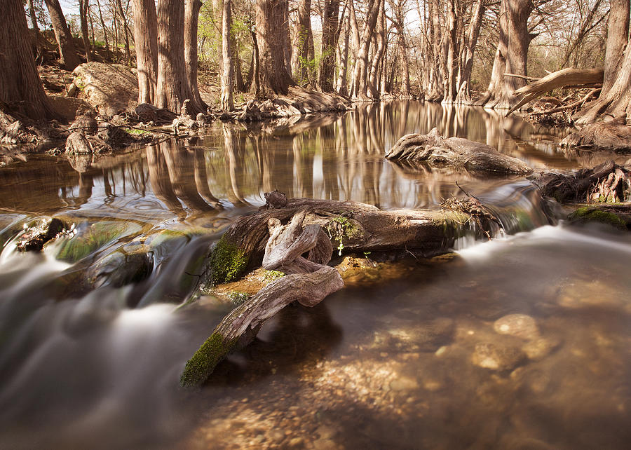 Cibolo Creek Photograph  - Cibolo Creek Fine Art Print