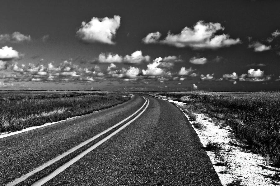 Cocodrie Highway Photograph