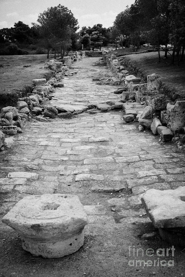 Colonnaded Street In The Ancient Site Of Salamis Famagusta Turkish Republic Of Northern Cyprus Trnc Photograph