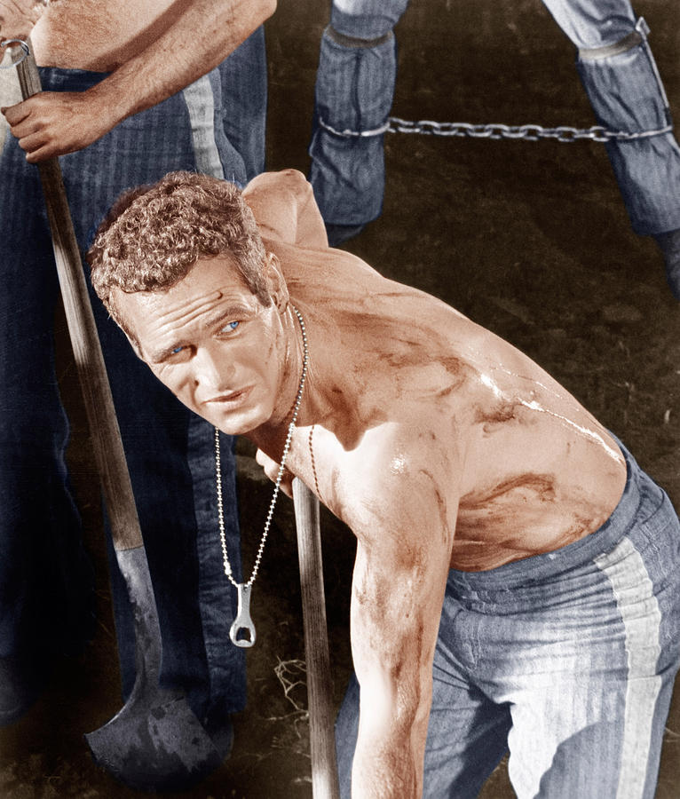Cool Hand Luke, Paul Newman, 1967 Photograph