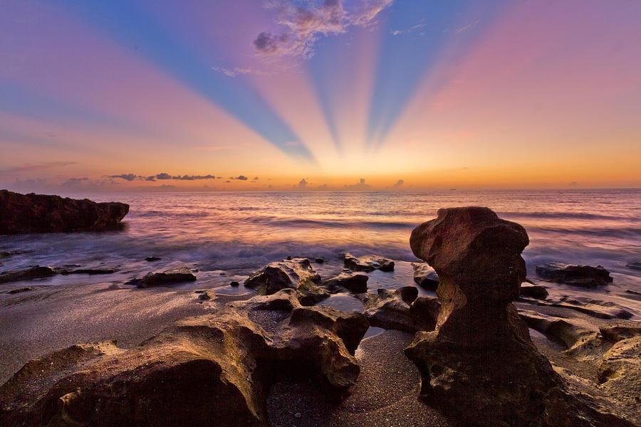 Coral Cove Photograph