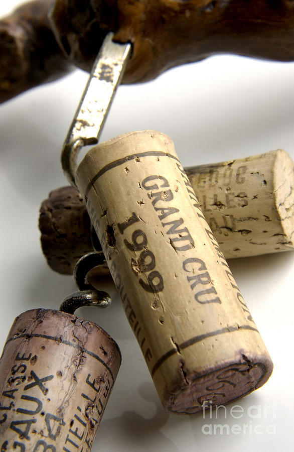Corks Of French Wine Photograph