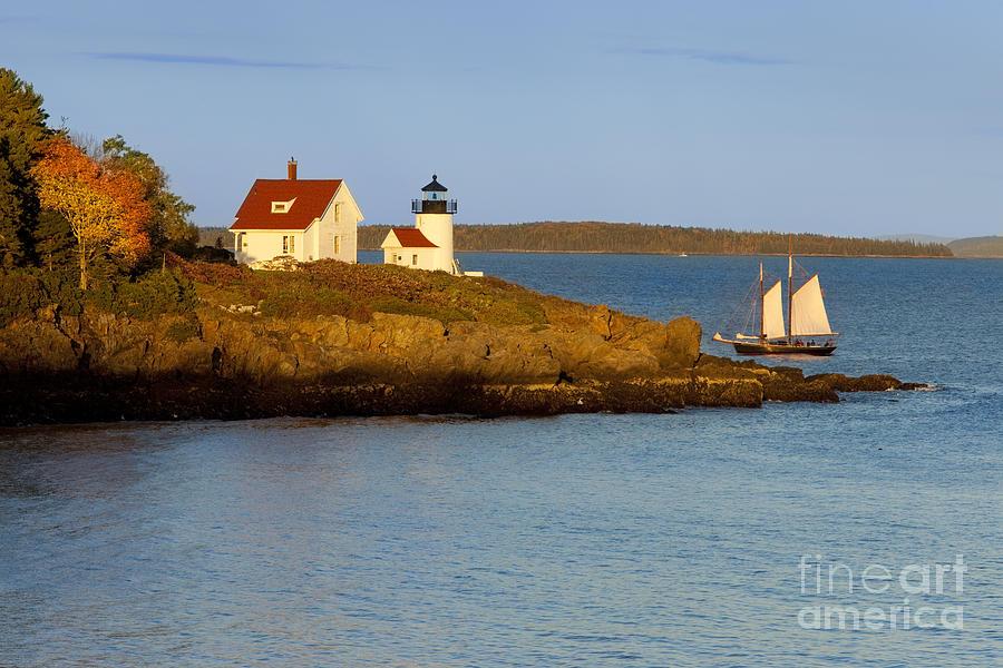 Curtis Island Light Photograph By Brian Jannsen