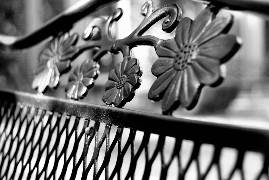Southern Photograph - Decorative by JAMART Photography