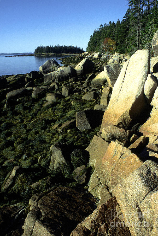 Deer Isle And Barred Island Photograph