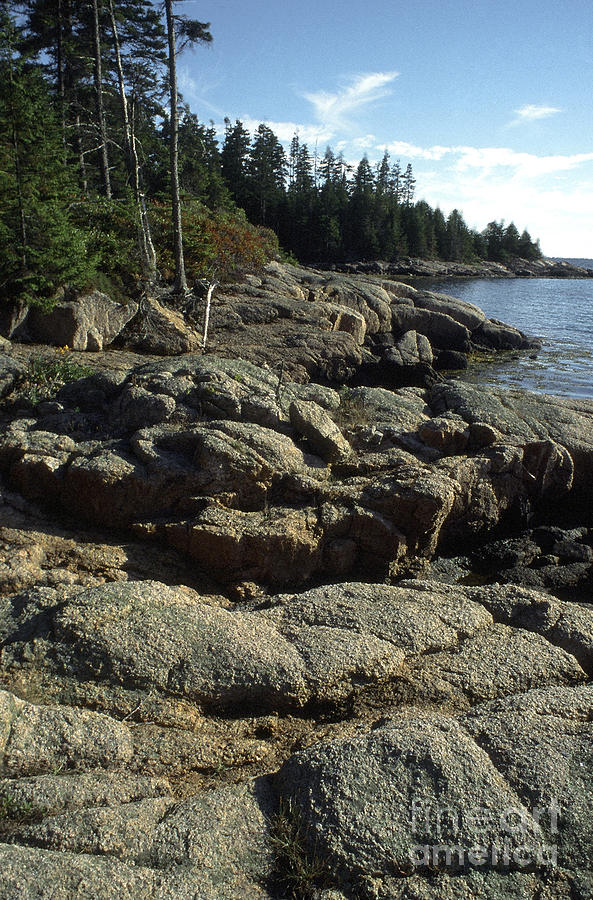 Deer Isle Shoreline Photograph