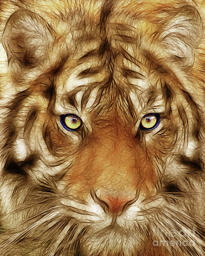 Eye Of The Tiger Photograph  - Eye Of The Tiger Fine Art Print