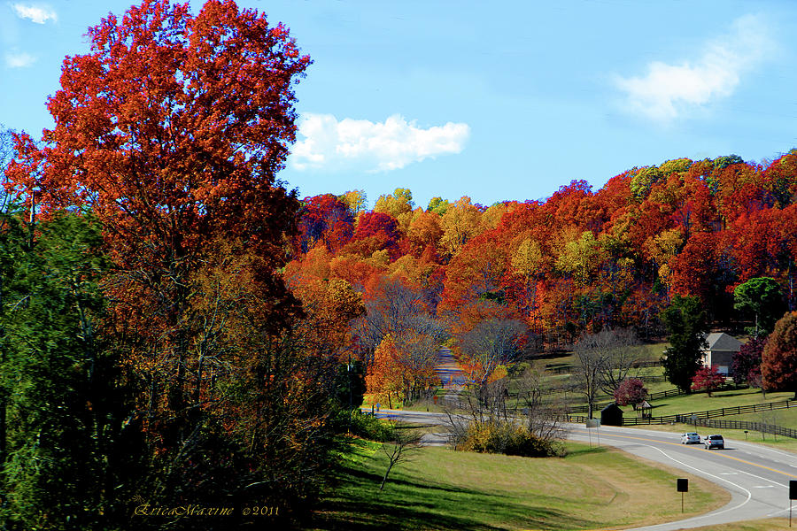 Fall Drive In Tennessee Photograph  - Fall Drive In Tennessee Fine Art Print