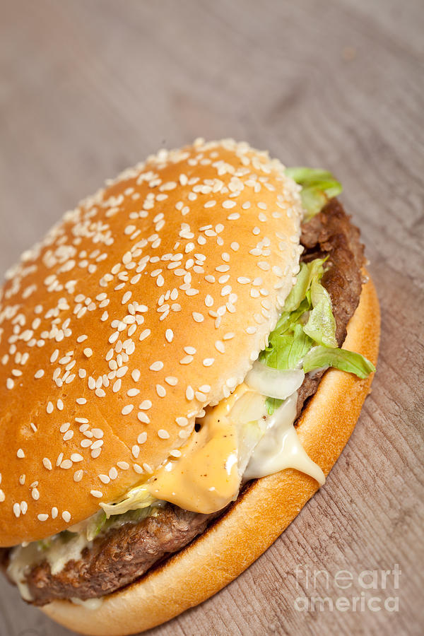 Fat Hamburger Sandwich Photograph