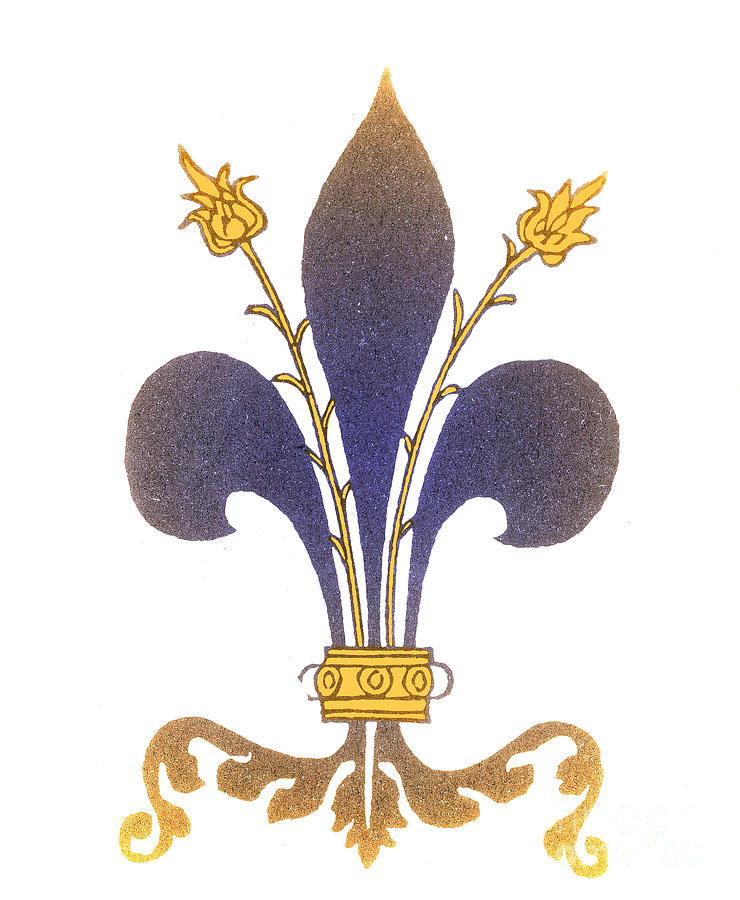 Fleur-de-lis Photograph