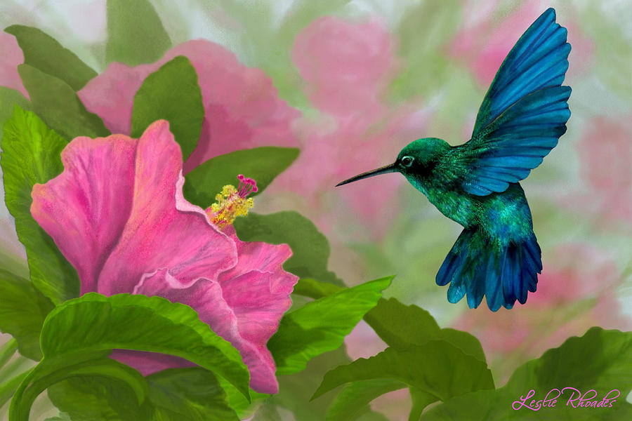 Colorful hummingbirds flying - photo#8