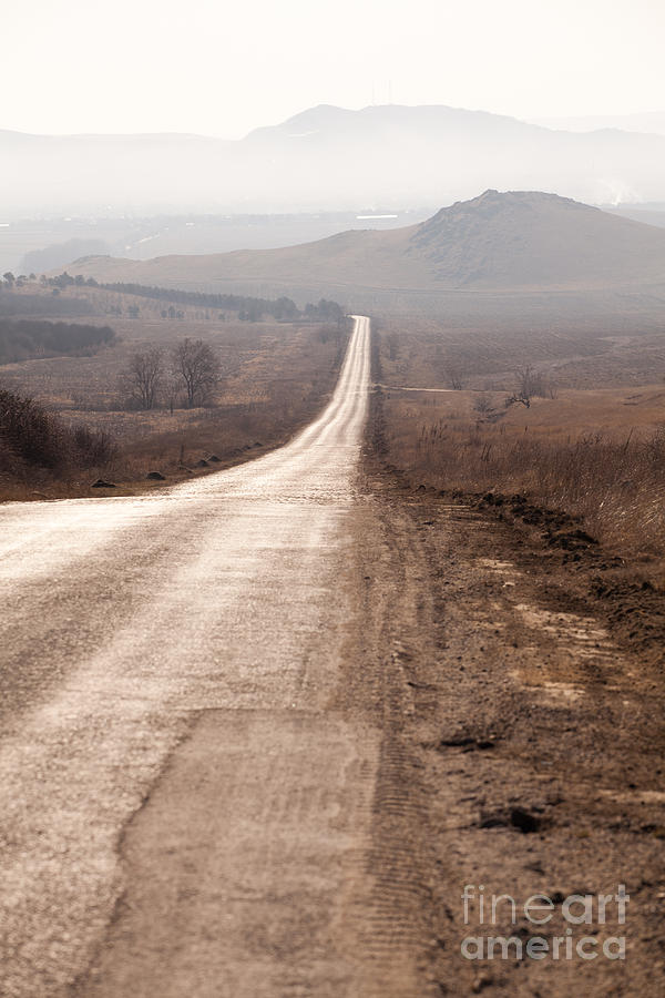 Foggy Road In Dobrogea Photograph