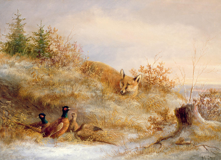 Fox And Pheasants In Winter Painting