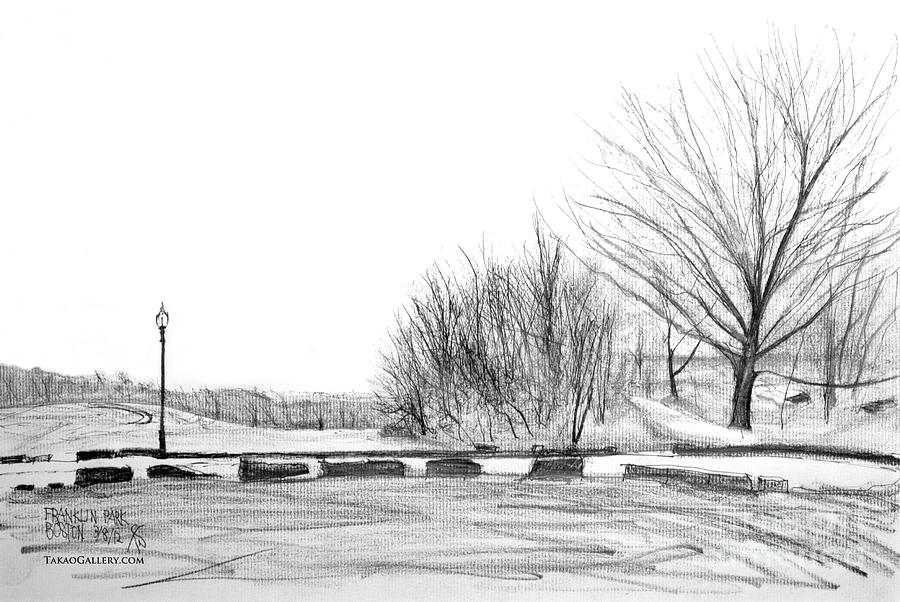 Franklin Park Drawing  - Franklin Park Fine Art Print