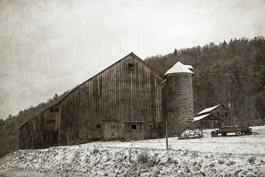 Tin Photograph - Frozen In Time  by John Stephens