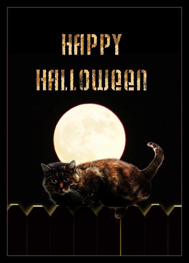 Full Moon Cat Mixed Media