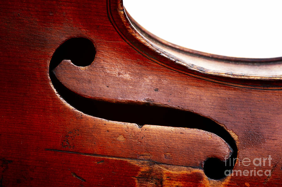 G Clef Photograph