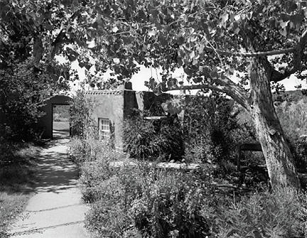 Garden Path Photograph