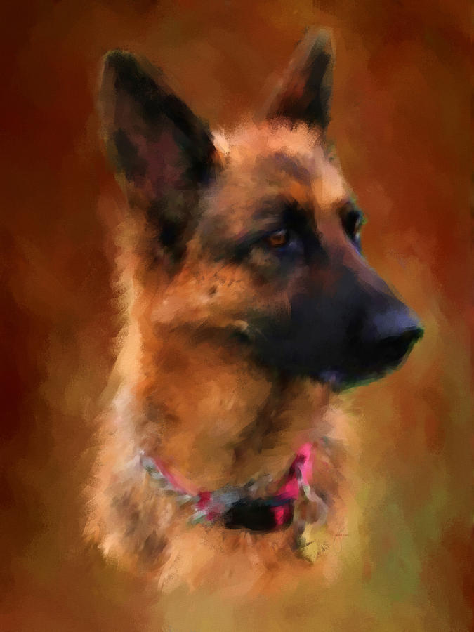 German Shepherd Portrait Painting  - German Shepherd Portrait Fine Art Print