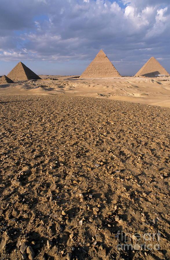 Giza Pyramids Photograph