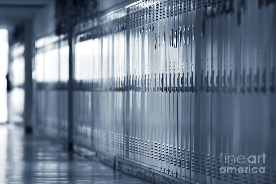 Grade School Lockers Photograph
