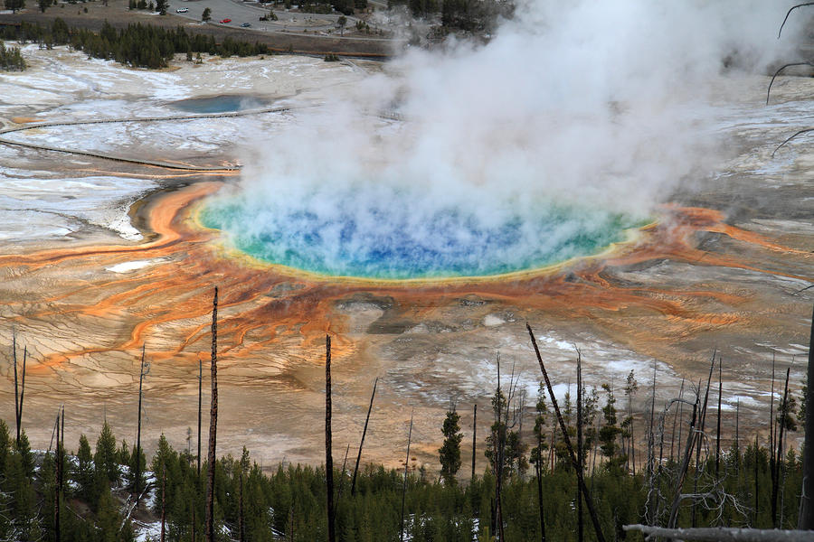 Grand Prismatic Springs In Yellowstone National Park Photograph  - Grand Prismatic Springs In Yellowstone National Park Fine Art Print