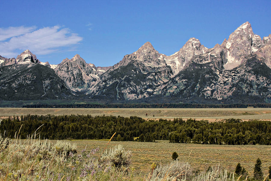 Grand Teton Wy Photograph  - Grand Teton Wy Fine Art Print