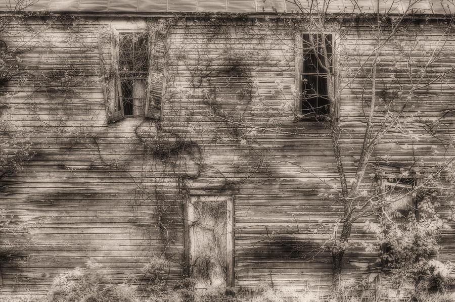 Haunting  Photograph
