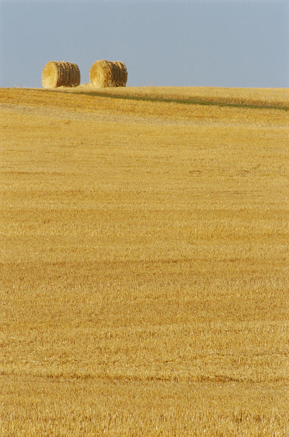 Agricultural Photograph - Hay Bales, Holland, Manitoba by Mike Grandmailson