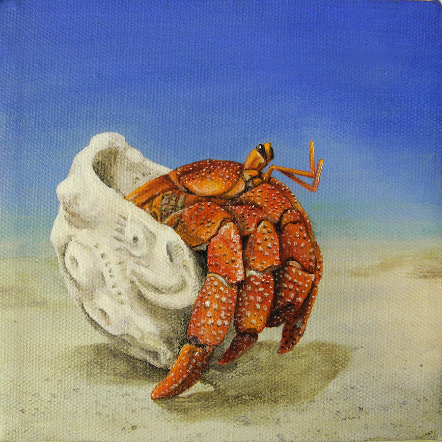 Crab Painting - Hermit Crab by Cindy D Chinn