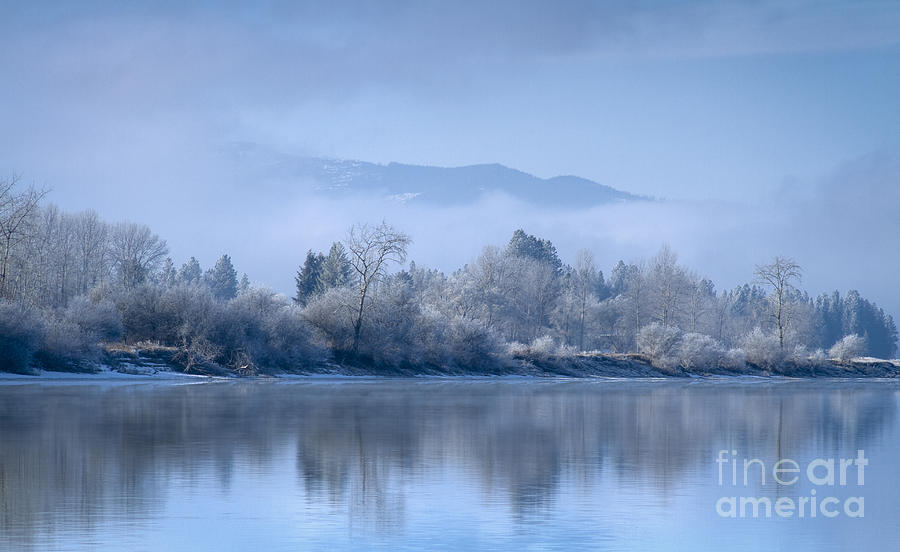Icy Blue Photograph  - Icy Blue Fine Art Print