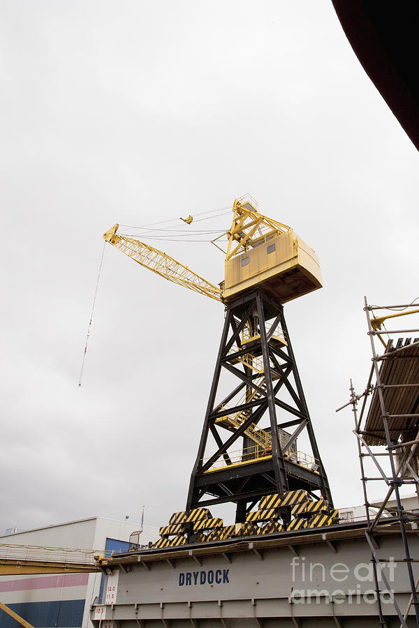 Industrial Crane Photograph