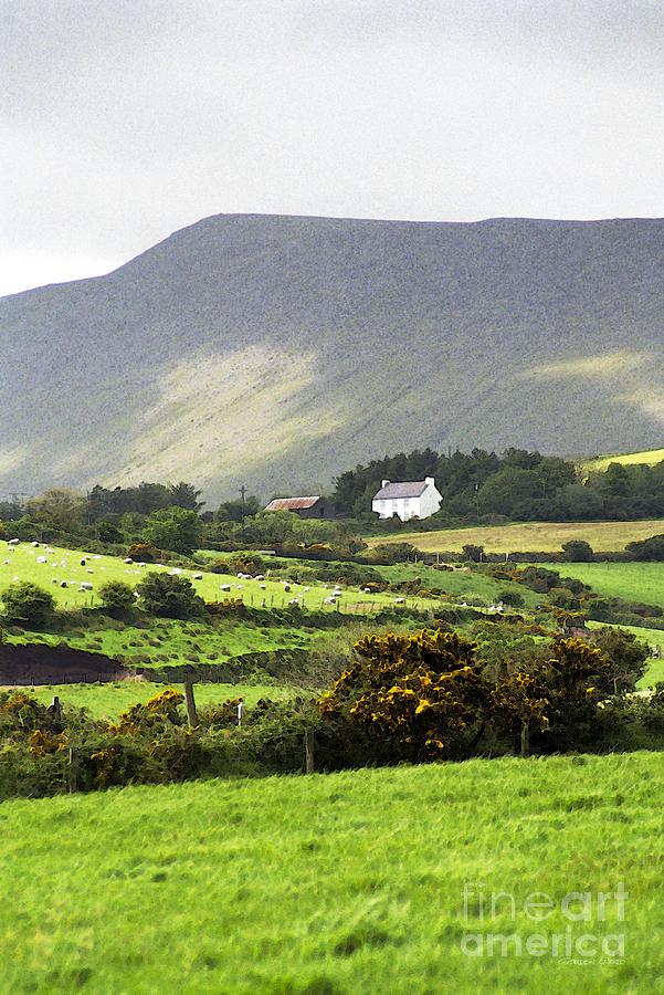Dingle Penninsula Photograph - Irish Farm - Dingle Peninsula  by Gordon Wood