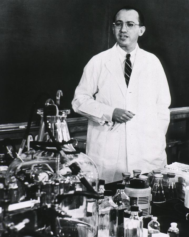 Jonas E. Salk 1914-1995, American Photograph