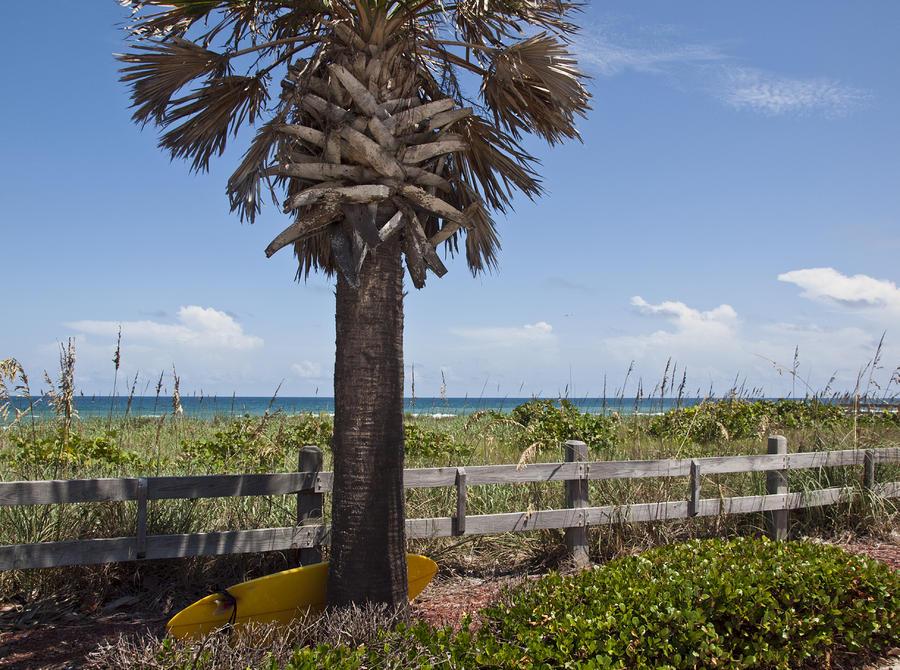 Juan Ponce De Leon Landing Site In Florida Photograph