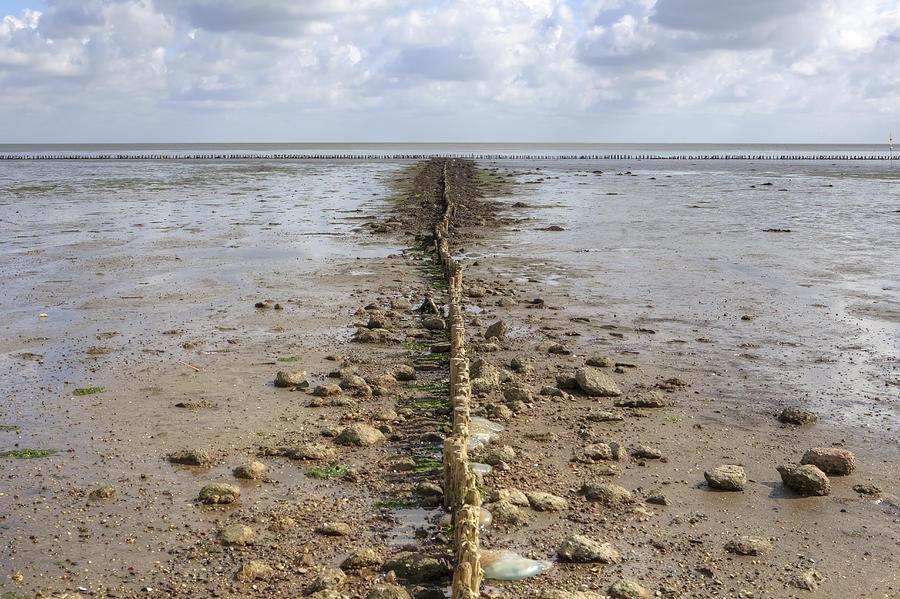 Wadden Sea Photograph - Keitum - Sylt by Joana Kruse