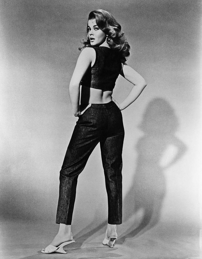 Kitten With A Whip, Ann-margret, 1964 Photograph