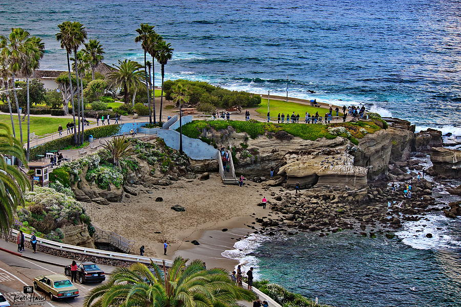 La Jolla Cove Photograph