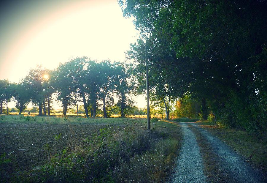 Landscape Near Mauvezin Photograph