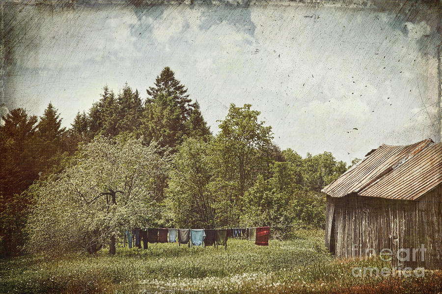 Laundry Drying On Clothesline On A Summer Day Photograph  - Laundry Drying On Clothesline On A Summer Day Fine Art Print